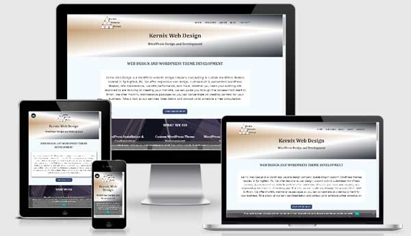 My website from the site Am I Responsive